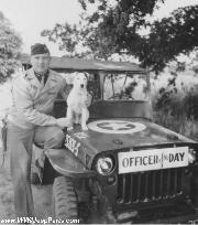 Whitey The Dog poses with Capt. Highfield and the 351st Fighter Squadron's GLOSS OD painted Jeep.