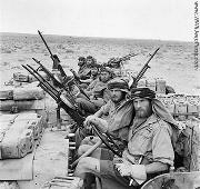 British SAS - Special Air Service - Jeeps in North Africa.