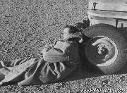 British SAS - Special Air Service - Stirling napping against a jeep tire.
